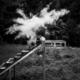 Mehlexplosion auf Treppe im Wald, Schwarzweißfoto, Zwischenmomente | Nina Hrusa Photography