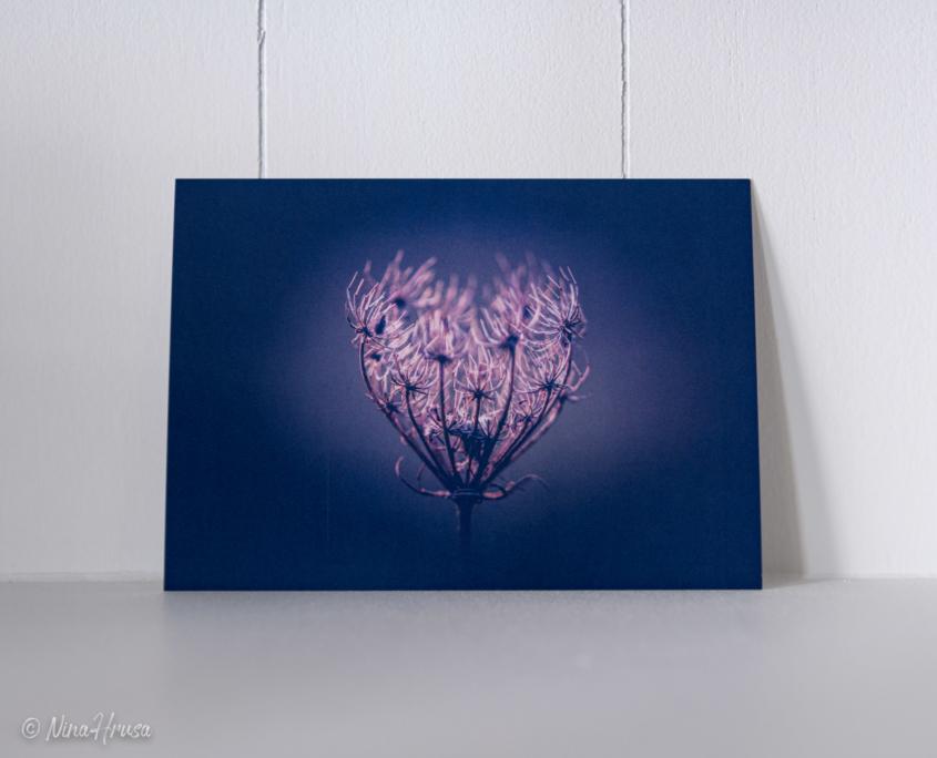 Postkarte Herz, Zwischenmomente | Nina Hrusa Photography