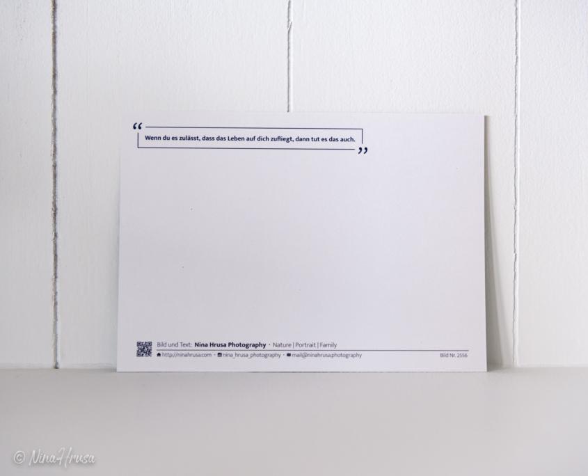 Postkarte Dandelion Rückseite, Zwischenmomente | Nina Hrusa Photography