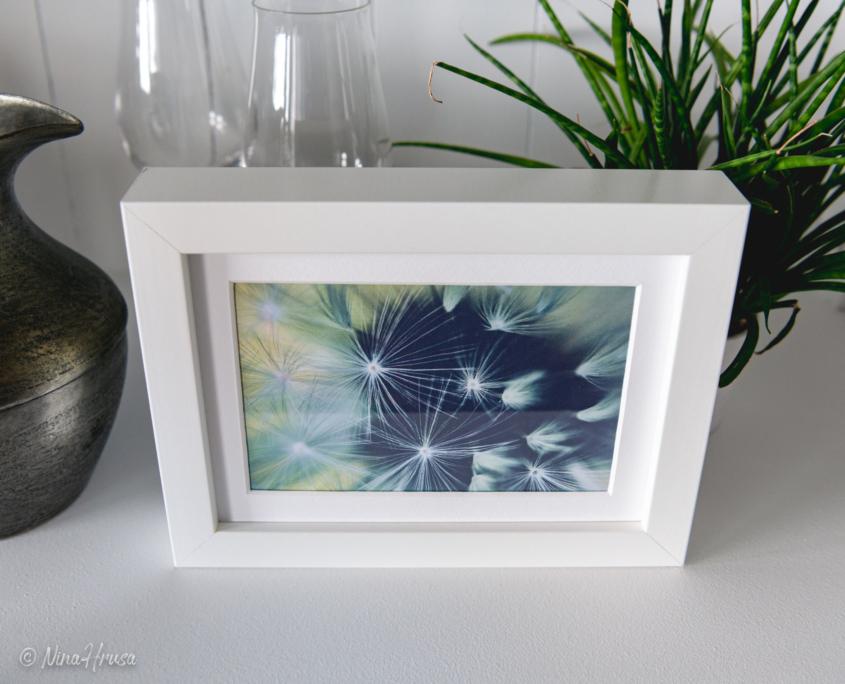 Postkarte Dandelion in Bilderrahmen, Zwischenmomente | Nina Hrusa Photography