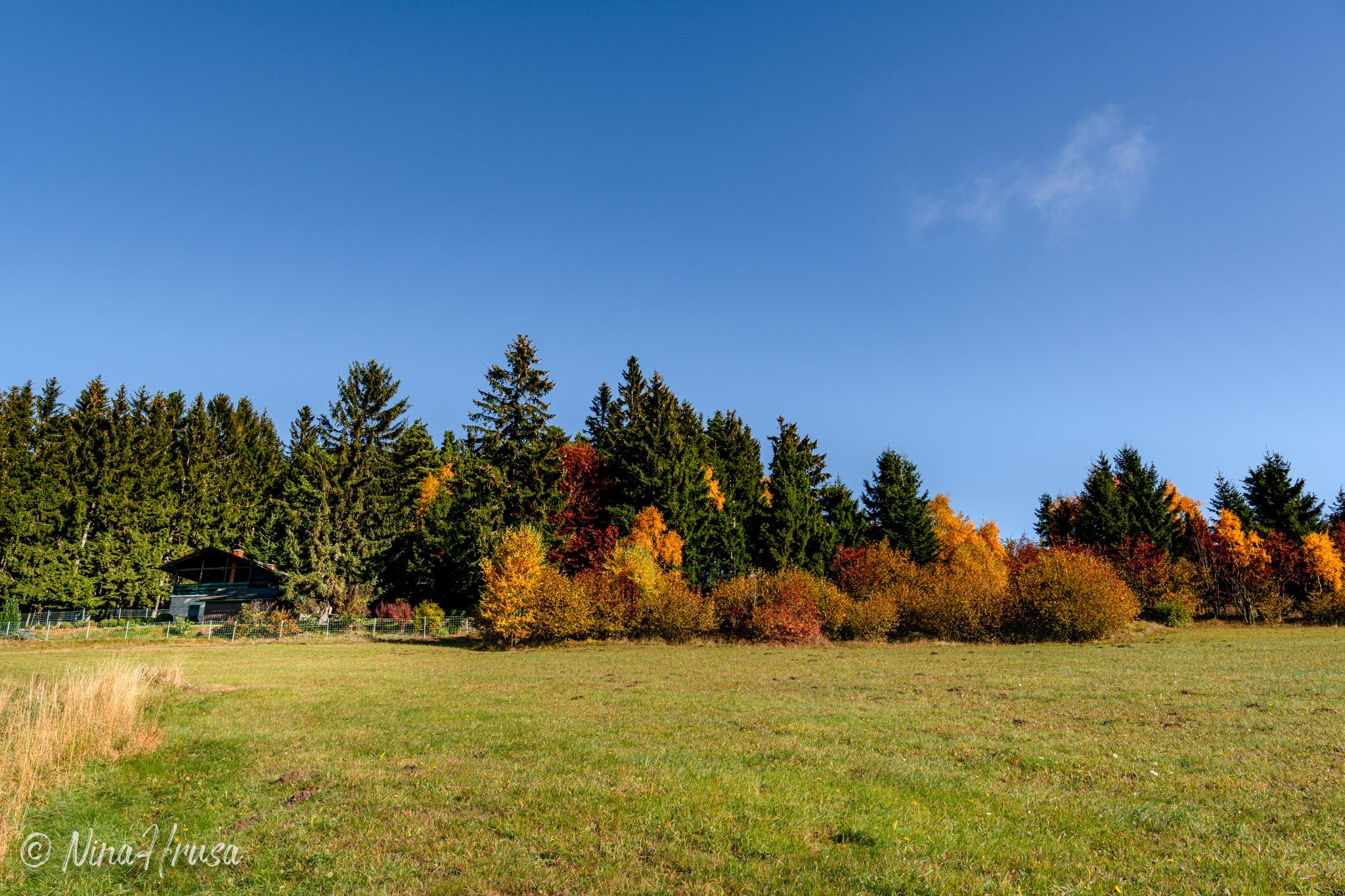 Herbstfoto, Pöllauberg, Oststeiermark, Zwischenmomente | Nina Hrusa Photography