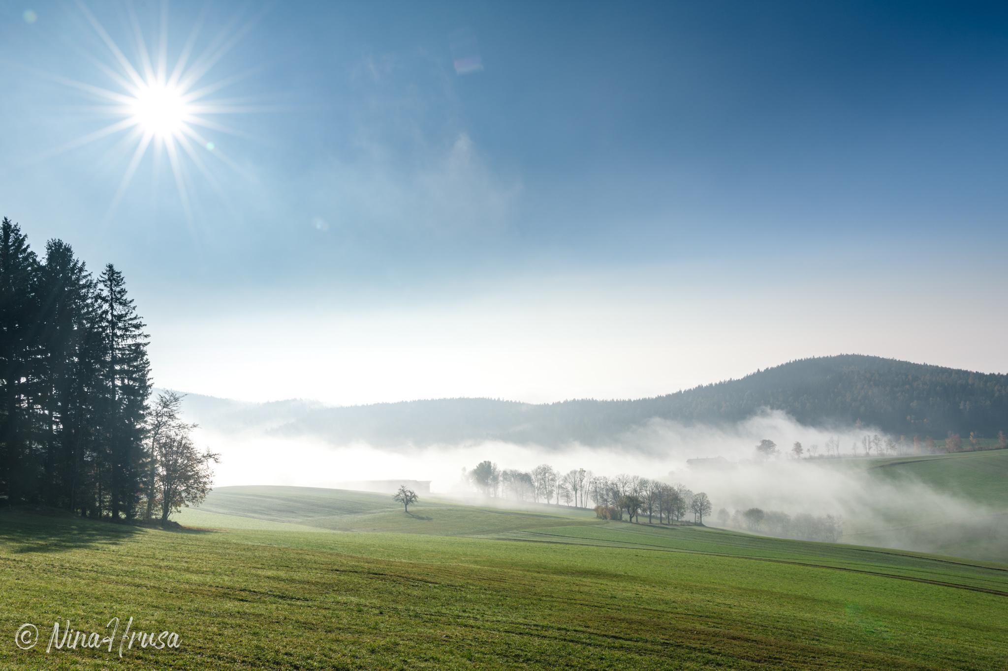 Sonne und Nebel, Oststeiermark, Zwischenmomente | Nina Hrusa Photography